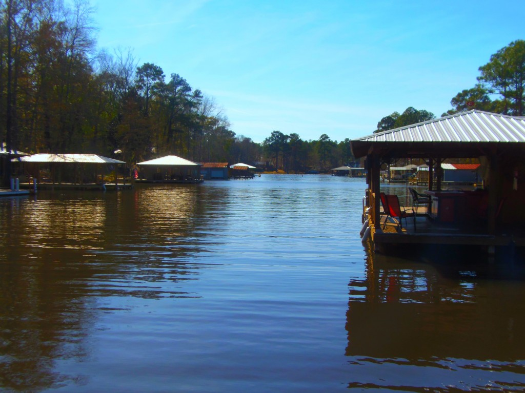 Lake Blackshear Mason Hughes Realty Lake Blackshear Ga